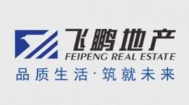 竞技宝官方下载电白区飞鹏房地产开发竞技宝官网下载苹果版