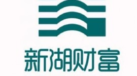 新湖财富投资管理有限公司