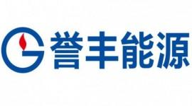 广东誉丰能源有限公司