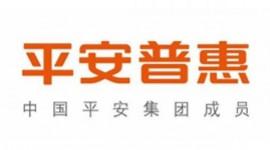 平安普惠投资咨询竞技宝官网下载苹果版竞技宝手机端高凉南路分公司
