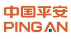中国平安财产保险股份有限公司茂名中心支公司